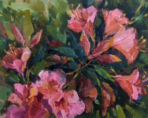 Pink Azaleas - Millie Gosch 03