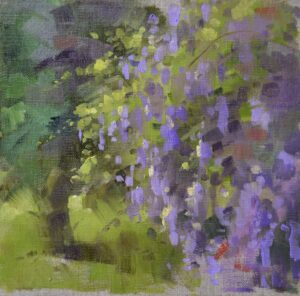 Yard of Wysteria by Martin Pate Open030